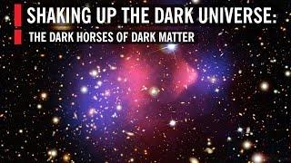 Shaking Up the Dark Universe: The Dark Horses of Dark Matter