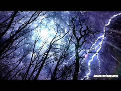Forest Rain & Thunderstorm Sounds 10 Hours | Sleep or Study to Rain Falling White Noise Ambiance