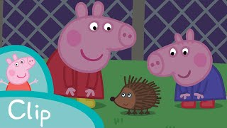 Peppa Pig - Outside at night (clip)