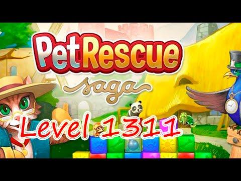 Pet Rescue Saga Level 1311 (NO BOOSTERS)