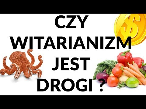 Surowa Dieta I Witarianizm Jest Drogi?  #167
