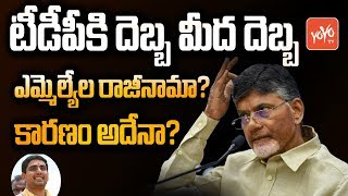 TDP Position in Andhra Pradesh | AP CM YS Jagan Mohan Reddy Vs Chandrababu