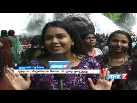 Courtallam season starts with floods in all waterfalls | News7 Tamil