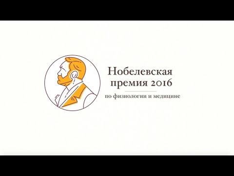 Кто получил Нобелевку в 2016 году? Часть 1: Физиология и медицина