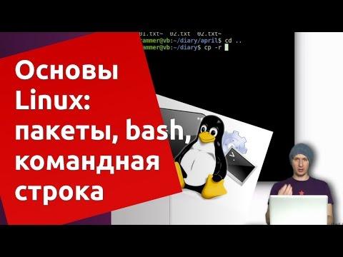 Основы Ubuntu Linux: apt-get, bash, командная строка
