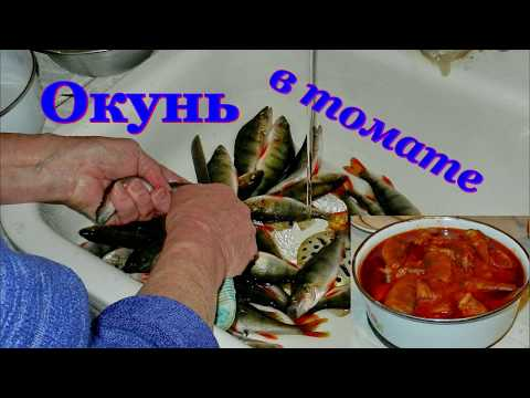 Окунь в томате. Видео рецепты от Борисовны.