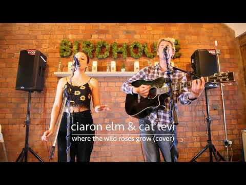 Cat Levi & Ciaron Elm -  Where The Wild Roses Grow Cover - Rotunda Unplugged