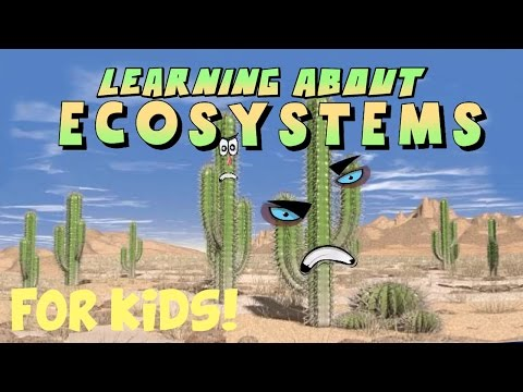 Learning About Ecosystems video