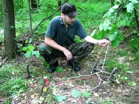 Survival Triggered snare trap -Prezivljavanje u prirodi-Modifikacija nagazne zamke u poteznu zamku