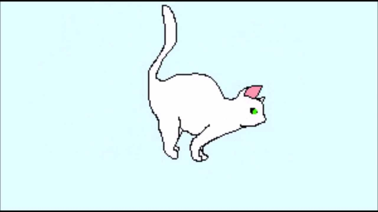 Cat running animation