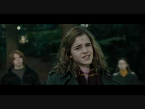 Hermione Says The Darndest Things...