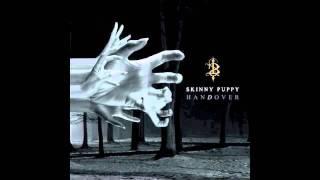 Watch Skinny Puppy Village video