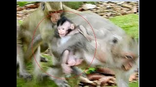 Heartbreaking newborn was drag by DeeDee, Newborn & mother was drag hard by DyDy
