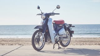 2019 Honda Super Cub C125 MC Commute Review