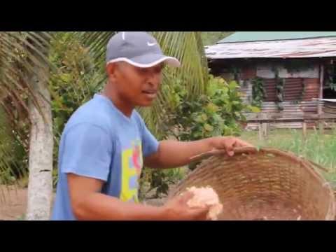 TERI & EBI......Made by Javanese in Suriname.