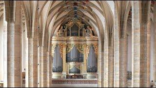 """Johann Sebastian Bach – """"Toccata d-Moll""""⎜Albrecht Koch an der Silbermann-Orgel im Freiberger Dom"""