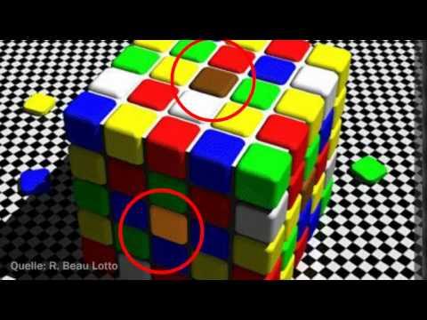tr gerischer schatten t uscht gehirn optische illusion der woche youtube. Black Bedroom Furniture Sets. Home Design Ideas