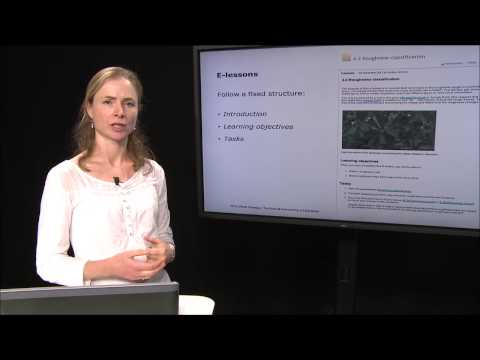 WAsP E-Learning: A Training Course in Wind Energy