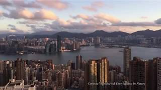Timelapse: seven days in Hong Kong - clear skies, toxic smog, then rain.