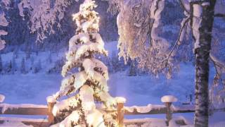 Watch Willie Nelson White Christmas video