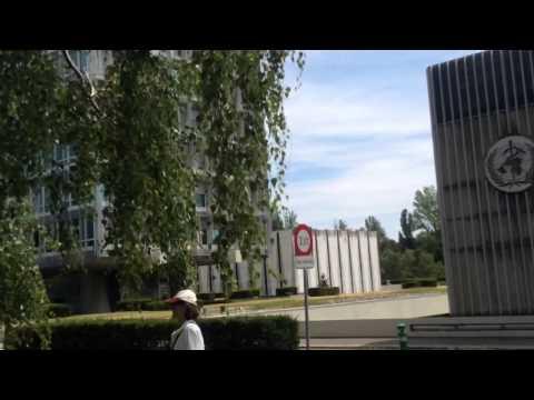 Fukushima breaking news; Geneva World health org. Protest K