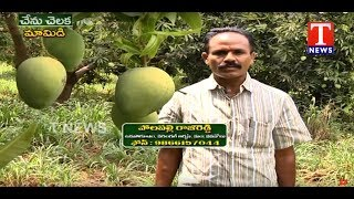 Farmer Polepally Raji Reddy About Organic Mango cultivation - Chenu Chelaka  - netivaarthalu.com