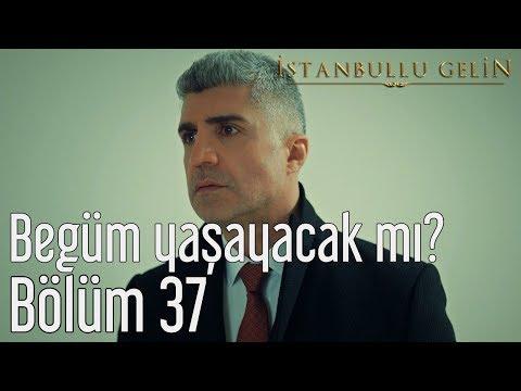 İstanbullu Gelin 37. Bölüm - Begüm Yaşayacak mı?