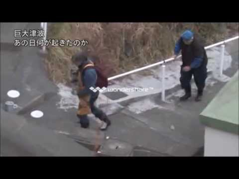 Short Integrated Video Of Largest Earthquake And Tsunami Of Japan 2011 March 13 video