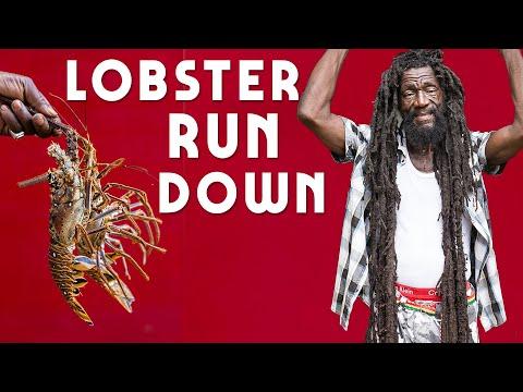 Lobster Rundown part 1...Jamaica Style! thumbnail