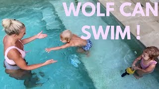 WOLF CAN SWIM | vlog