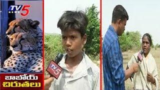 కంటిమీద కునుకు లేకుండా చేస్తున్న చిరుతలు..! | #RangaReddy | Ground Report