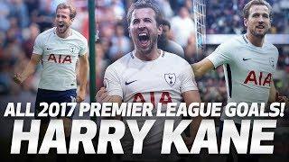 HARRY KANE   ALL 39 PREMIER LEAGUE GOALS IN 2017