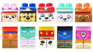 paw patrol ionix have wrong heads