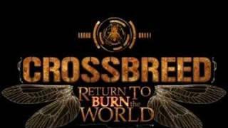 Watch Crossbreed Release Me video