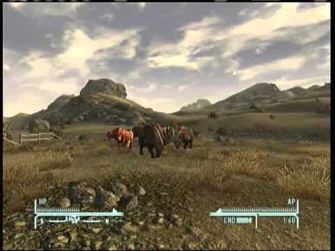 Fallout New Vegas - Animal Cruelty Isn't Funny