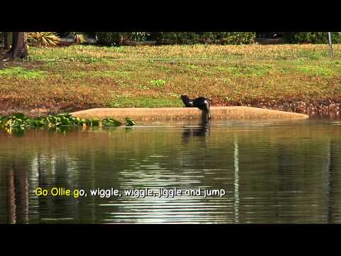 Otters | Ollie The Otter Karaoke | Smart Kids | Kids Videos | Youtube For Kids | Jack Hartmann video
