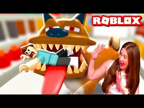 ОСТОРОЖНО ЗЛАЯ СОБАКА в ROBLOX! Игровой летсплей про собаку  Приключение от КАТАЛЕКС