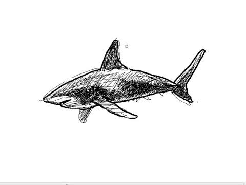 Cómo dibujar un tiburón paso a paso fácilmente