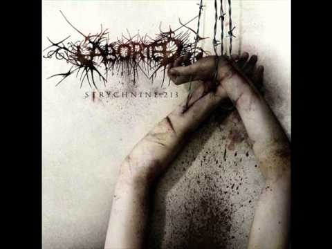 Aborted - A murmer in decrepit wits