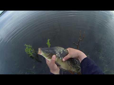 рыбалка в крыму на карпа