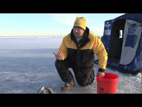 Fish Ed. First Ice Walleye