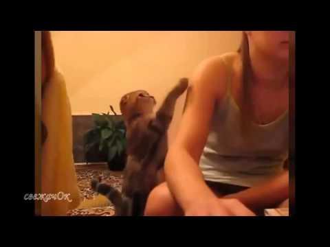 porno-video-sama-hotela