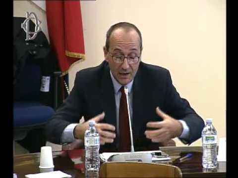 Roma - Presidenza italiana Unione europea, audizione Bagnai (04.12.13)