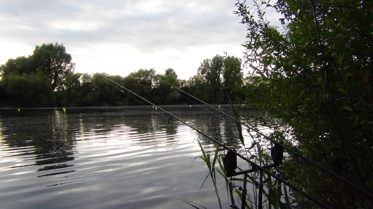 The local pond part 1 first session carp fishing youtube for Local fishing ponds