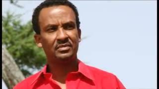 Dawit Tsige -ዳዊት ጽጌ - yehilme guadegna -  የህልሜ ጓደኛ - New Ethiopian Music 2016 ZeKezera ዘ-ከዘራ