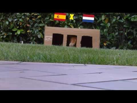 BRAZIL 2014 : SPAIN - NETHERLANDS 1-5