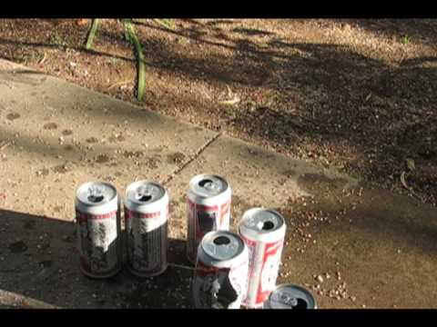 PREDATOR POLYMAG PELLET vs CANS ~ SEE FRAME AT 29 SECONDS
