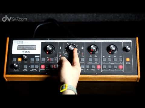 Moog Slim Phatty Demo Music Videos