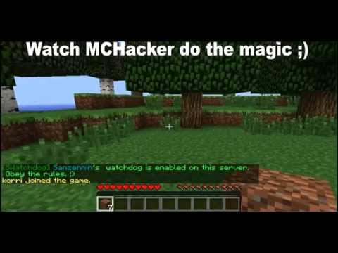 How to hack Minecraft Servers with MCHacker! [Feb 2012] [Force OP] [Bypass bans]!