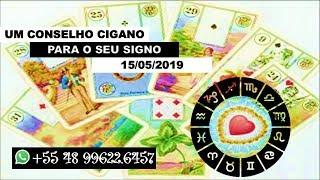Diário 15/05 com Karine Ouriques